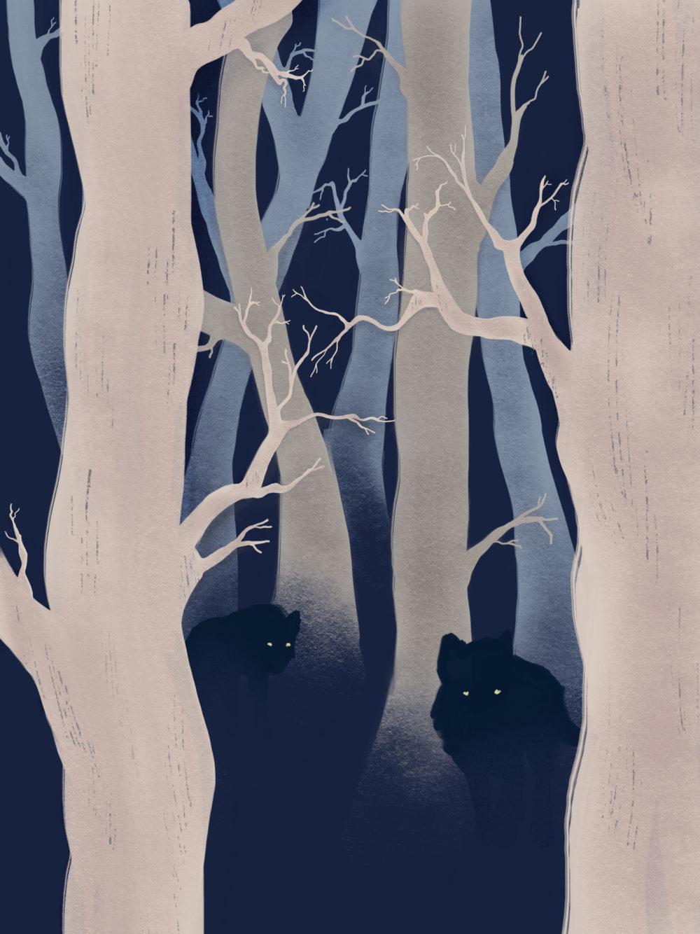 Illustration de deux loups dans une forêt, de nuit