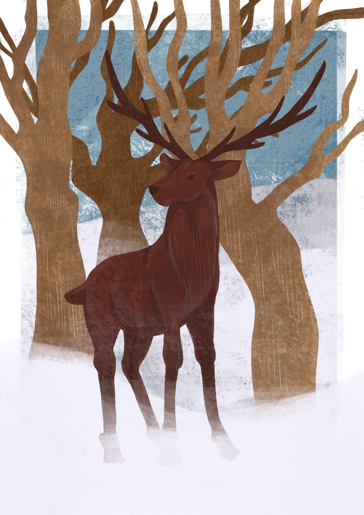 Cerf dans la neige devant des arbres