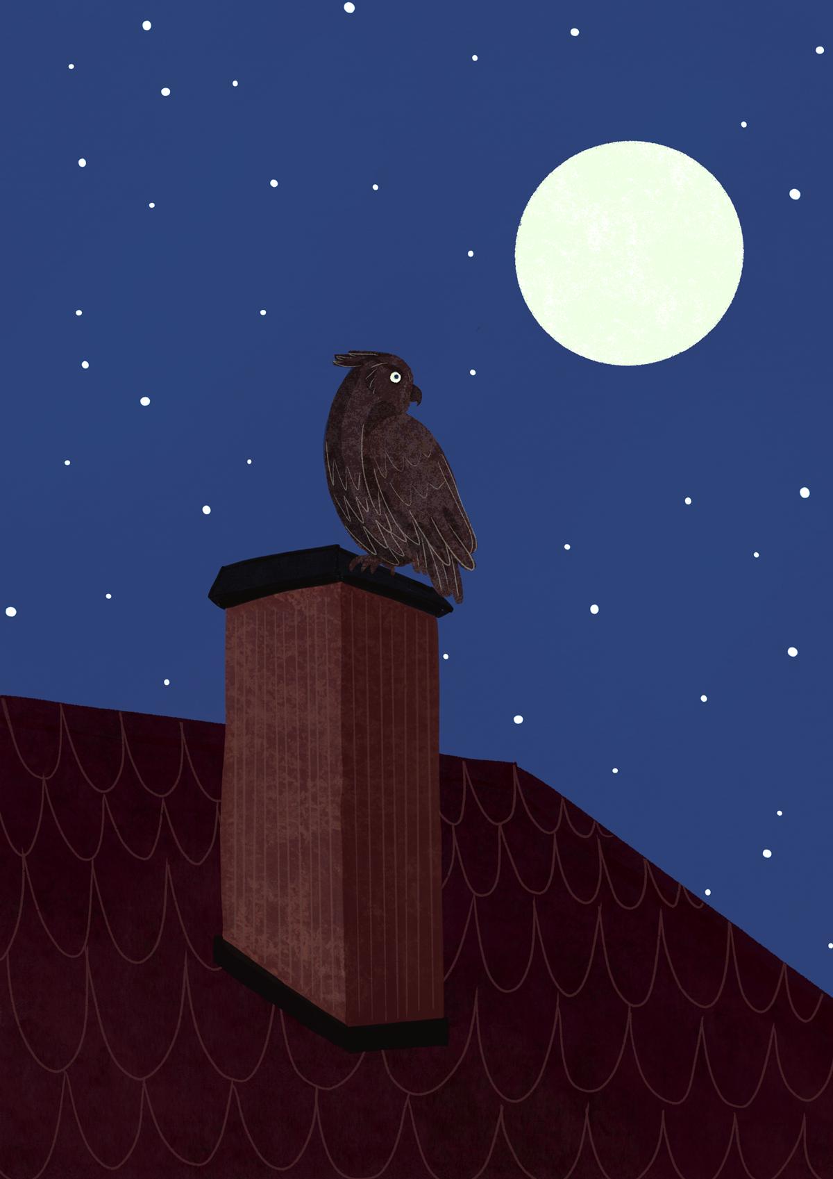 Hibou sur une cheminée devant la pleine lune